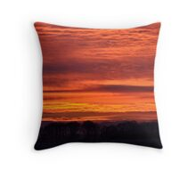 What a beauty! Throw Pillow