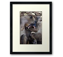 Teeth Framed Print
