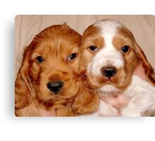Brother & Sister Canvas Print