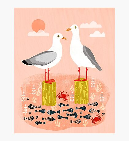 Seagulls - Bird Art, Coastal Nautical Summer Bird Print by Andrea Lauren Photographic Print