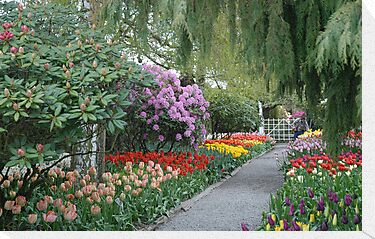Beautiful Spring Garden by Marjorie Wallace