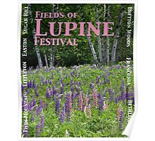 Fields of Lupine Festival Poster