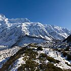 Hooker Valley 1 by Charles Kosina