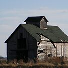 barn by Dave & Trena Puckett