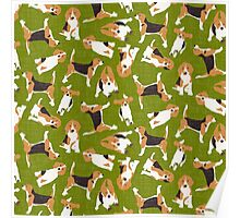 beagle scatter green Poster