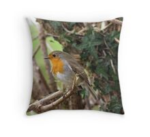 Waiting for Me? Throw Pillow