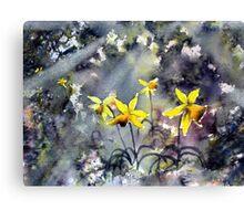Daffodils of Hope Canvas Print