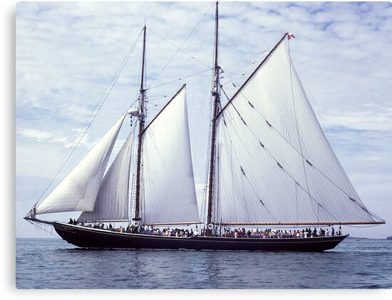 Bluenose 2 by George Cousins