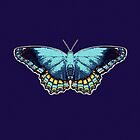 Butterfly Blue by Jean Gregory  Evans