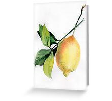 Branch of  lemons with leaves Greeting Card