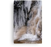 Ice & Water Canvas Print