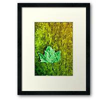 Meditation in Green Framed Print