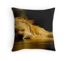 Sleeping Lucy Throw Pillow
