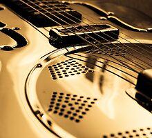 Slide Guitar by Amy Skinder