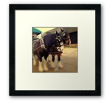 Horse & Carriage  Framed Print
