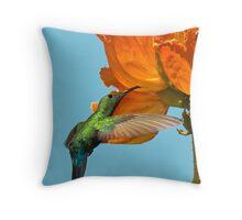 Green-Throated Hummingbird Throw Pillow