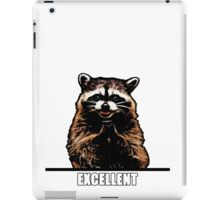 Evil Raccoon iPad Case/Skin