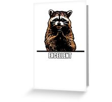 Evil Raccoon Greeting Card