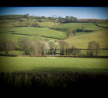Fields Through the Viewfinder by Jonathan Dower