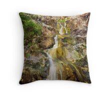 Fish Bay Waterfall Throw Pillow