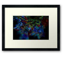 Fractal Flame Art: Rainbow Framed Print