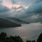 Marlborough sounds by bbtomas