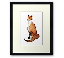 Serious Fox Framed Print
