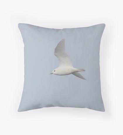 Ivory Gull... Throw Pillow