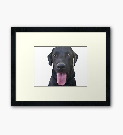 dogs, cartoon Framed Print