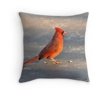Sunset Basking Throw Pillow