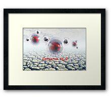 Water Conservation Framed Print