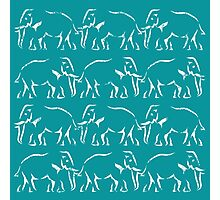 Elephant Train Photographic Print
