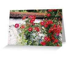 Wild Red Roses Greeting Card