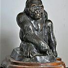 'Mountain Gorilla' by Vincent von Frese