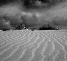 Eucla Sand Dunes. by trevorb
