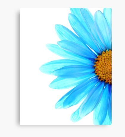 Color Me Blue Canvas Print