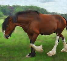 Shire Horse Mare by Pamela Saville