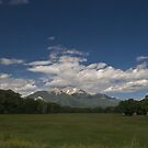 farm with Mt. Princeton by Kevin Williams