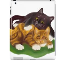 Another Tussle between Two Kittens iPad Case/Skin
