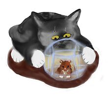 Hamster Ball and Curious Kitten by NineLivesStudio