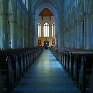 Cathedral II by Colleen Milburn