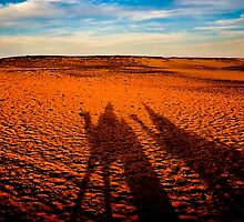 Camel Shadows on The Sahara - Egyptian Landscape by Mark Tisdale