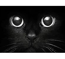 Black Cat #1 Photographic Print