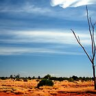 Our Vivid & Colourful Outback © Vicki Ferrari Photography by Vicki Ferrari
