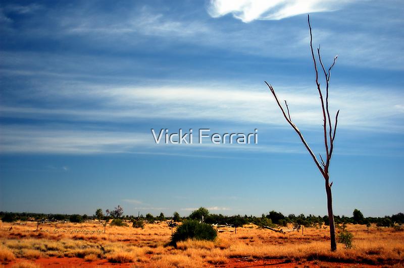 Our Vivid & Colourful Outback © Vicki Ferrari Photography by Vicki Ferrari
