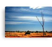 Our Vivid & Colourful Outback © Vicki Ferrari Photography Canvas Print