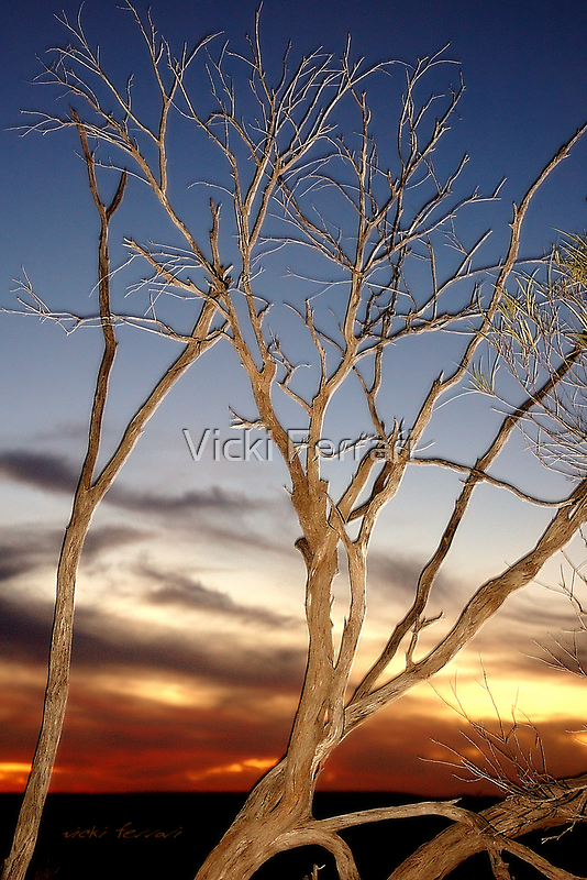Baldy Lookout, Quilpie 2 © Vicki Ferrari Photography by Vicki Ferrari