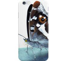 Apatura iris on the runway iPhone Case/Skin