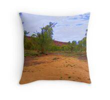 todd river 1 Throw Pillow