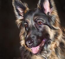 German Shepherd Dog  by Pamela Saville